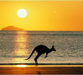 australia_kangaroo-for-blog